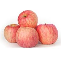 【山东特产】烟台苹果栖霞红富士肉厚 脆甜多汁 新鲜水果75-80#果 5斤包邮