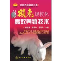 家庭养殖致富丛书--獭兔规模化高效养殖技术