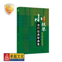 小提琴流行经典歌曲集 西洋器乐曲集系列 小提琴曲谱书五线谱流行乐谱教材书籍