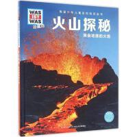 火山探秘 (德)曼福雷德・鲍尔(Manfred Baur) 著;王荣辉 译