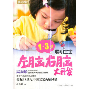 1~3岁聪明宝宝左脑右脑大开发(pdf+txt+epub+azw3+mobi电子书在线阅读下载)