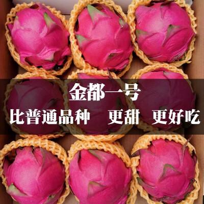 金都一号红心火龙果新鲜采摘当季水果净重4.5-5斤左右7-9枚装 产地现摘现发,新鲜发货,不泡药
