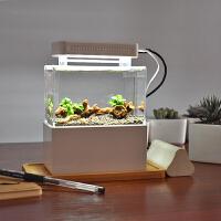 微缸办公室迷你鱼缸宿舍桌面小缸淡水海水族箱过滤斗鱼生态缸 +加热片+温度计
