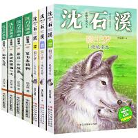 沈石溪动物小说全集7册全套狼王梦正版包邮 的书全系列 第七条猎狗*飞渡正版书免邮 再被狐狸骗一次最