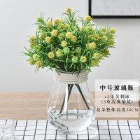 花瓶摆件水培绿萝玻璃花瓶欧式简约小清新家居透明插花容器