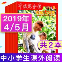 【共5个月4本打包】中国儿童报动物大世界杂志2019年1.2合刊/3/4/5月 中小学生课外阅读书籍动物百科大全自然探