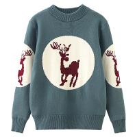 男童毛衣套头秋冬款针织衫中大童纯棉儿童男孩保暖