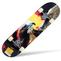 动感极限滑板 四轮双翘板 公路滑板儿童滑板 滑板 轮滑3色可选 飞鹰