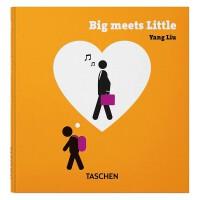 Yang Liu.Big meets Small 大小相异 刘扬新作TASCHEN进口原版图书