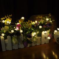LED星星彩灯串灯 婚庆结婚用品 婚礼新房婚房装饰布置 新年节日装饰灯求婚道具 3米30灯雪花暖白