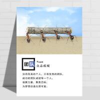 企业文化挂画 会议室公司装饰画办公室企业文化墙挂画标语励志海报定制壁画