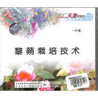 黎蒴栽培技术VCD( 货号:103508023900307)
