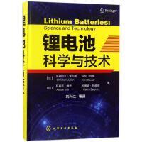锂电池科学与技术 (法)克里斯汀?朱利恩//艾伦?玛格//(加)阿肖克?维志//卡里姆?扎赫伯
