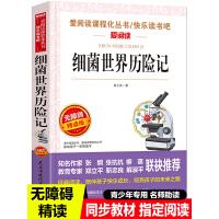 迪士尼国际金奖动画电影故事 小鹿斑比 迪士尼国际金奖迪士尼经典电影故事书 0-3-6岁卡通小学生一二年级注音读物畅销书
