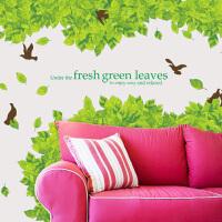 宜美贴 清新绿叶 客厅卧室电视沙发墙面装饰特大型可移除浪漫墙贴纸