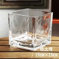 花瓶玻璃透明绿萝水培植物养花玻璃瓶客厅水养器皿风信子水培花盆