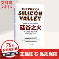 硅谷之火:人与计算机的未来 保罗・弗赖伯格