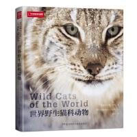 世界野生猫科动物