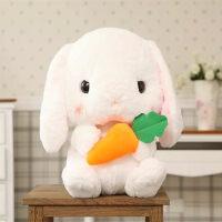 韩国可爱毛绒玩具兔子娃娃公仔玩偶生日情人节礼物女友抖音