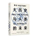 大历史与人类的未来