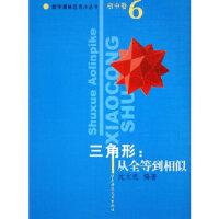 【二手旧书9成新】三角形:从全等到相似/数学奥林匹克小丛书(初中卷6) 华东师范大学出版社 9787561740743