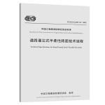 道路灌注式半柔性路面技术规程(T/CECS G:D51-01―2019)