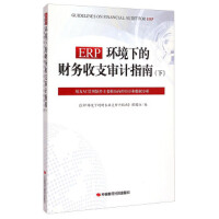 【新书店正版】ERP环境下的财务收支审计指南(下):用友NC管理软件主要模块内控审计和数据分析,《ERP环境下的财务收