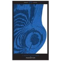 Magnetism 吸引力 Scott Fitzgerald 菲茨杰拉德作品 英文原版文学小说书籍