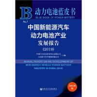【正版现货】动力电池蓝皮书:中国新能源汽车动力电池产业发展报告(2019) 中国汽车技术研究中心 大连松下汽车能源有限