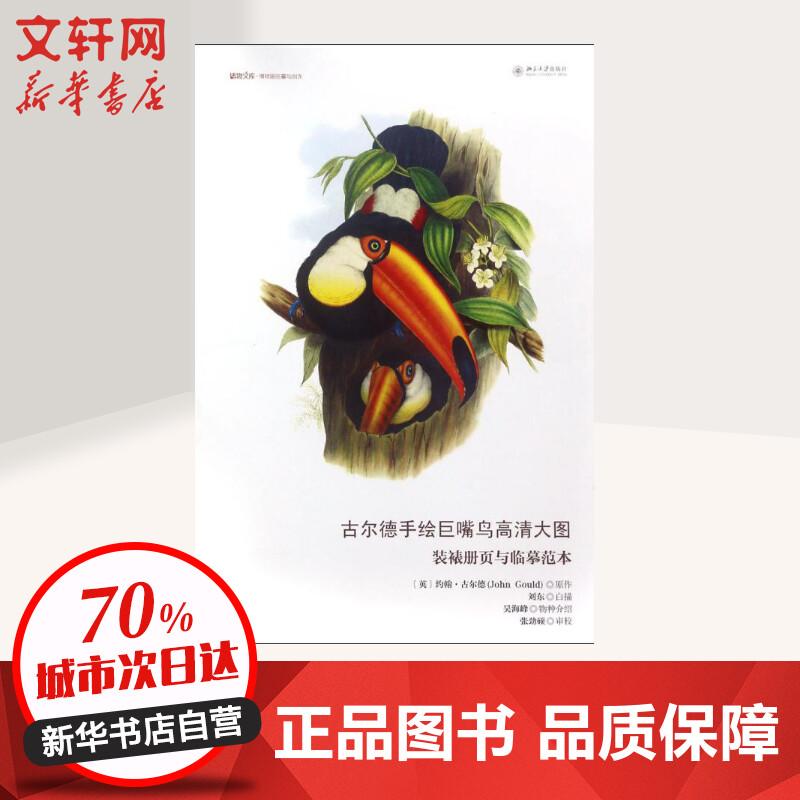 古尔德手绘巨嘴鸟高清大图:装裱册页与临摹范本 (英)约翰?古尔德