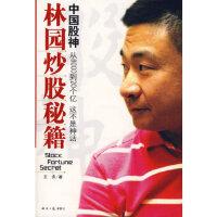 中国股神林园炒股秘籍 王洪 经济日报出版社