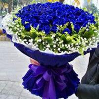 520情人节99朵红蓝白粉香槟玫瑰求婚花束鲜花速递广州上海北京杭州全国送花