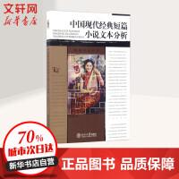 中国现代经典短篇小说文本分析 刘俐俐 著