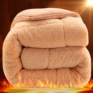 羊羔绒被子被芯冬被加厚保暖宿舍冬季棉被单人双人春秋被褥