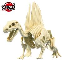 恐龙木乃伊化石考古挖掘套装美国儿童diy手工玩具