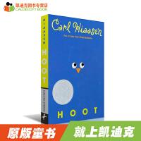 【99选5】#凯迪克 英文原版绘本 美国进口英文原版纽伯瑞银奖小说:Hoot 猫头鹰的叫声