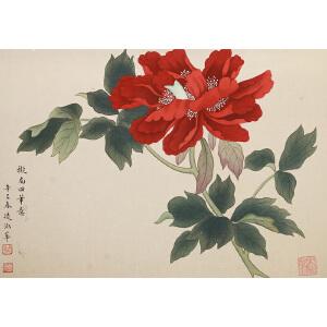 J1184凌淑华《花开富贵》