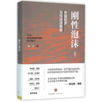 刚性泡沫(新版)朱宁著 中国经济 经济读物中国经济为何进退两难