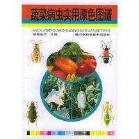 蔬菜病虫害实用原色图谱 梁金兰 河南科学技术出版社