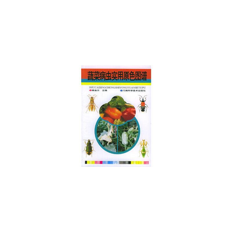 【新书店正版】蔬菜病虫害实用原色图谱 梁金兰 河南科学技术出版社 正版图书,请注意售价高于定价,有问题联系客服谢谢。