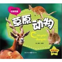 我的野生动物明星-草原动物