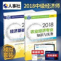 2018中级经济师资格考试教材辅导 经济基础知识农业经济知识与实务2本中级全真模拟测试全套2本中国人事出版社