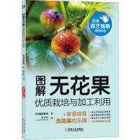 图解无花果优质栽培与加工利用