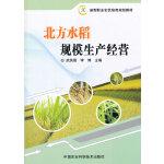 北方水稻规模生产经营
