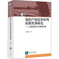 知识产权民事审判证据实务研究 知识产权出版社