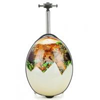 七夕礼物3D蛋形儿童拉杆箱可爱旅行箱宝宝旅行登机箱愤怒的小鸟蛋蛋箱16寸 恐龙 16寸