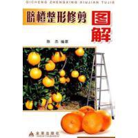 【二手书9成新】脐橙整形修剪图解 陈杰著 金盾出版社 9787508234281