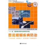 图说鳗鲡疾病防治,林天龙,海洋出版社9787502771959