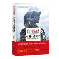 中国十亿城民――人类历史上最大规模人口流动背后的故事