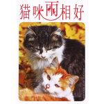 猫咪两相好(明信片)